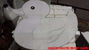 canard-bain-geant3